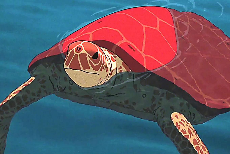 Proyección 'La tortuga roja' en Filmoteca de Catalunya (Barcelona)