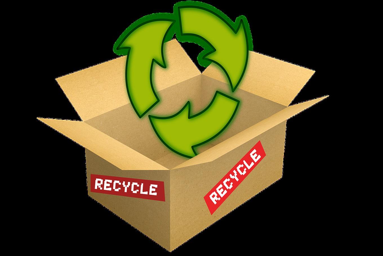 Taller de reciclaje de papel en Parque Botánico de Montealegre (Ourense)