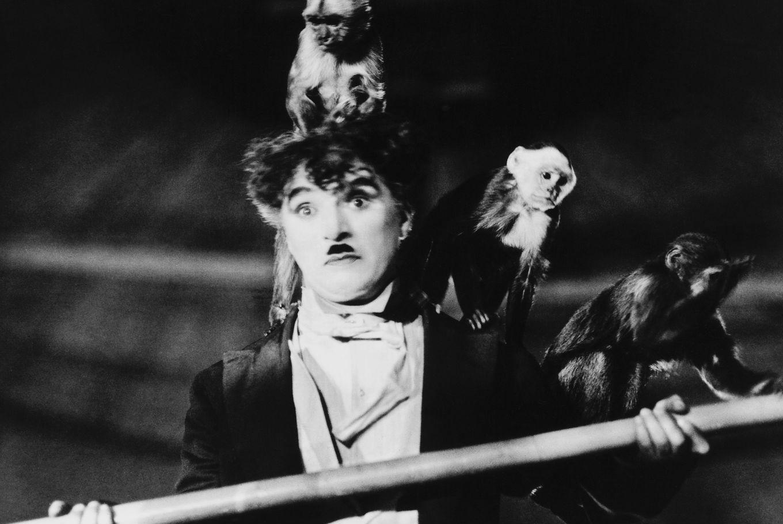 Proyección de 'Charles Chaplin' en Filmoteca de Catalunya (Barcelona)