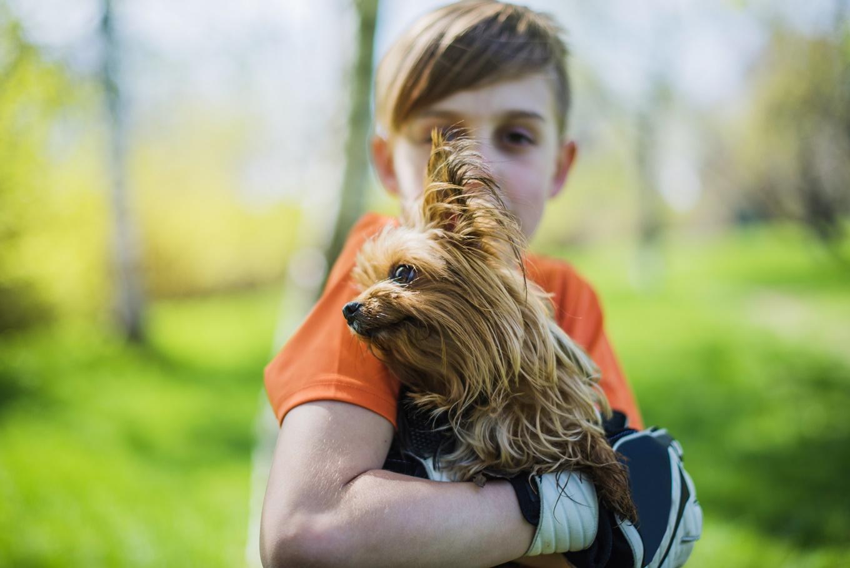 Taller para familias 'Animales en cadena' en Parque Juan Carlos I (Madrid)