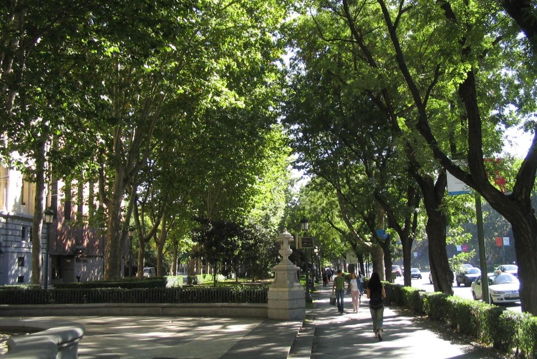 Paseo del Prado de Madrid