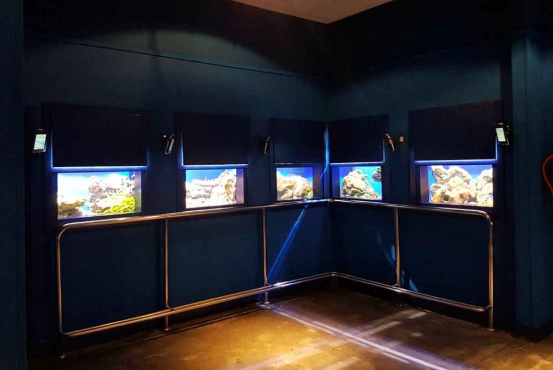 Getxo Aquarium
