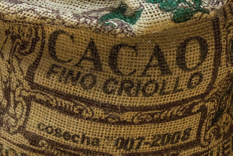 Taller 'Descubridores del cacao' en Museu de la Xocolata (Barcelona)