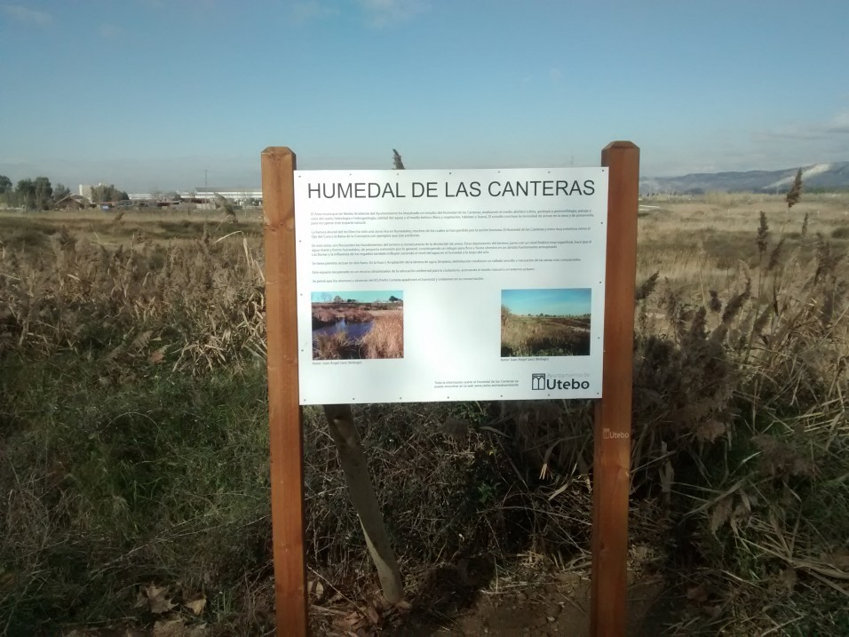 Actividad familiar 'Celebración del día de los Humedales 2018' en SEO Birdlife (Zaragoza)