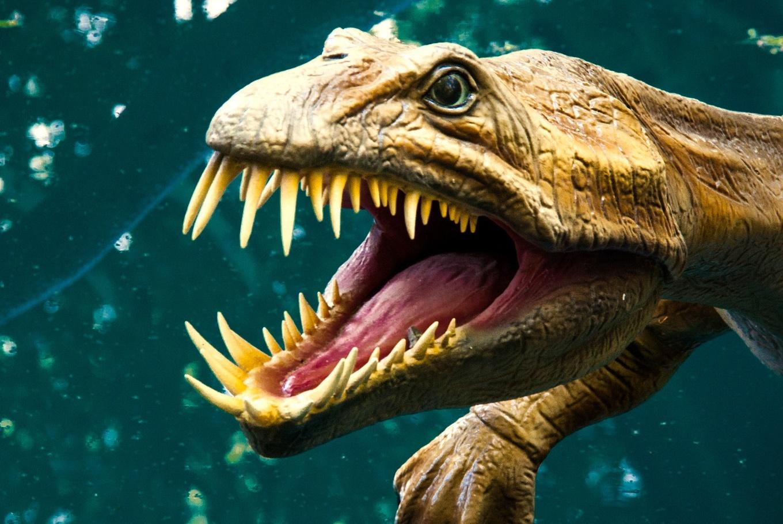Exposición 'Els nostres dinosaures' en Ciudad de las Artes y de las Ciencias (Valencia)