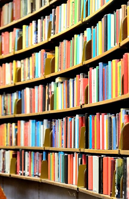 Biblioteca Municipal Néstor de Álamo